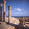 strange_complex: (Leptis Magna theatre)