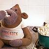 strange_complex: (ITV digital Monkey popcorn)