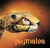 jaymalea: (Leopard)