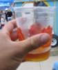 phreddd: (drinkie)