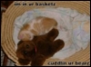 rosered32: (My Bear Thank you!)