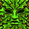 eregyrn: (green man default) (Default)