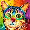 klacketykat: (rainbow cat)