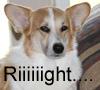 sarine: (Right)