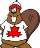 beaver67: (Default)