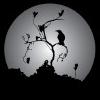 jvar: (Raven Moon)