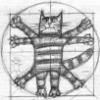 twoofspades2: (Vitruvian Cat) (Default)
