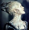 luckylove: (Borg Queen, star trek - TNG - borg queen)