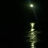 moongladewoman: (Full Moon)