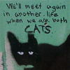 supertights: Image of a painted cat with text (Cat)