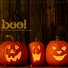 "supertights: Three pumpkins in a row with the word ""boo!"" (Pumpkins)"