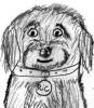 bergandsheepy: (Good Boy)