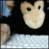 woolymonkey: (keyboard)