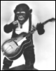 woolymonkey: (guitar chimp)