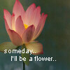 smile_n_cuddle: (Someday I'll be a flower)