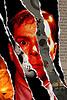 collisionwork: (promo image)