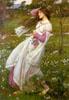 darcydodo: (windflowers)