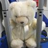 medeasdragons: (travel bear)