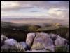 mrockwell: (Montana)