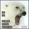 heinous_bitca: (OMGWTFPOLARBEAR!?, Lost 1)