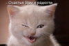 raisakushnir: (оптимист)