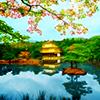 pshaw_raven: (Japan)