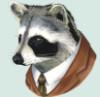 avnerd: (Mister Raccoon, MrRaccoon)