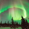 pshaw_raven: (Northern Lights)