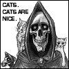cissalj: (cats)