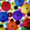 bibzik: (Зонты)