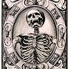 pshaw_raven: (Skeleton)