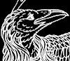 pshaw_raven: (Swandog Raven)