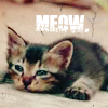faechan: (Misc | Meow)