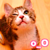 geekchick: (o_O)