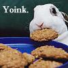 geekchick: (yoink)