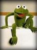 robinthefrog: (Default)
