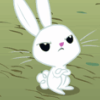 ff00ff: (Rabbit) (Default)