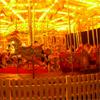 berryfloss: (carousel)