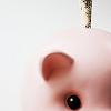 p0rc: (Piggie)