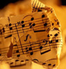 wanderingmusician: (music)