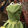 wonderbink: Kermit the Frog making a crumpleface (crumpleface)