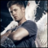 nazariblu: (Angel, Winchester, Supernatural, Micheal)