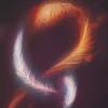 northeasternwind: (Feathers) (Default)
