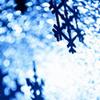 cck_brit: (winter)