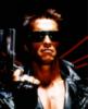 eme302: (Arnold)