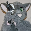 marko_the_rat: Rattus with a video camera (video, camera)