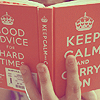the_muppet: (Stock: book | keep calm)