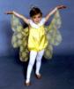 transpao: (butterfly)