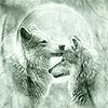 aerianya: (two wolf moon)
