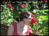 l_sylvanas: (rose)